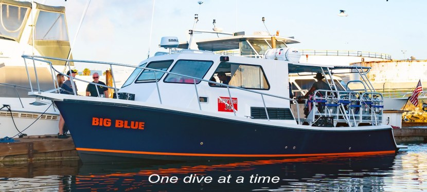 Monthly Dive BoatExcursions